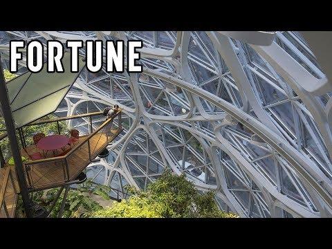 Amazon Headquarters Now Has a Rainforest I Fortune