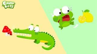 Candybots Animals - River Animal (Alligator, Frog, Hippo, Turtle, Beaver,Flamingo) - Apps for Kids