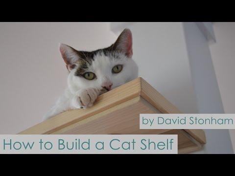 How To Build a Cat Shelf