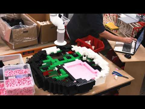 Building Awesome- LEGO® and DUPLO® Orca