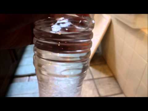 How to make Water Crystals! +Baby Crickets