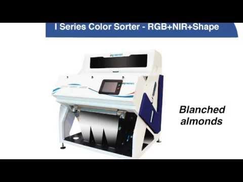 Blanched almonds on Meyer color sorter