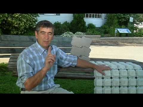 Home Work With Hank Permeable Pavers