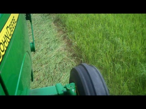 How to Cut Corners with a Hay Sickle (New Holland 451)/The Allen Brothers