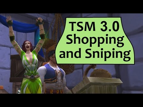 TSM Shopping, Sniping and Flipping Guide