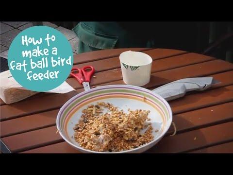 How to make a fat ball bird feeder