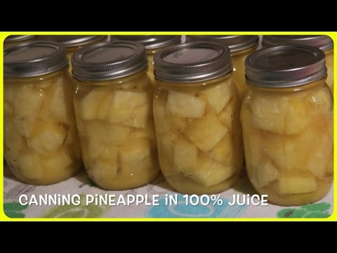 CANNED PINEAPPLE in 100% JUICE