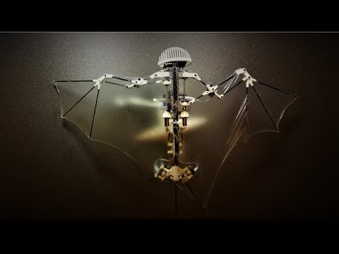 Advanced Robotic Bat Can Fly Like the Real Thing