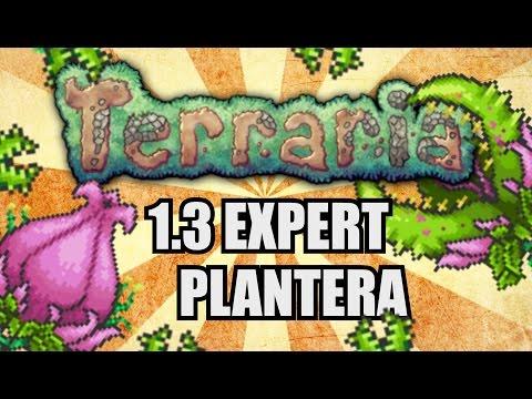 PLANTERA EASY KILL GUIDE! Terraria 1.3 Expert SOLO