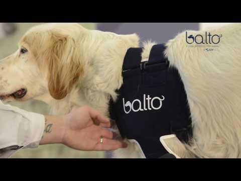BT LUX - BALTO ORTHOPEDIC DOG SHOULDER BRACE