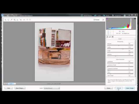 Learn how to save, open, and more in Camera Raw with Adobe Photoshop Elements 10
