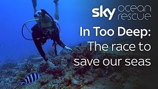In Too Deep: The race to save our seas