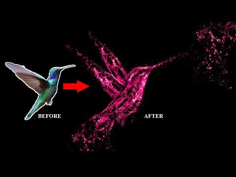 Water Splash Bird Photo Manipulation In Photoshop - Photoshop Tutorial - Photoshop CC
