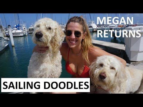 Sailing Puerto Rico, Megan Returns, Drone Flight - Sailing Doodles Ep. 22