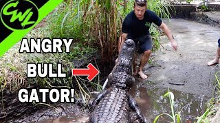 Trying to clean BULL GATOR PIT!!!