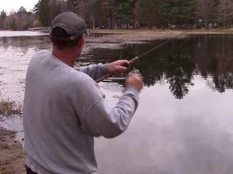 Shallow Spring Bluegill fishing from shore.