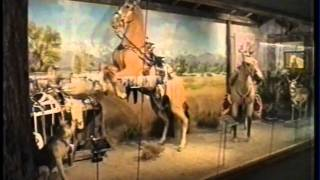 THE ROY ROGERS MUSEUM