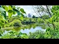 高雄 鳥松濕地公園