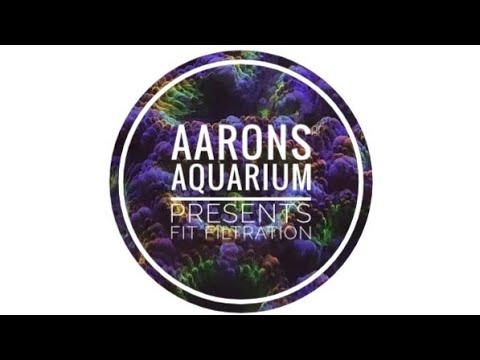 Aarons Aquarium Presents: Fit Filtration