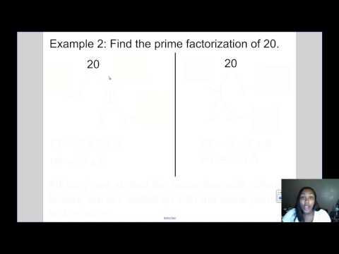 Mrs Kingsberry- Prime Factorization