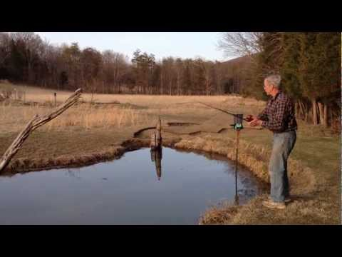 First Time Fishing our Pond in 2013 - Improper Handling of Catch and Release Fish