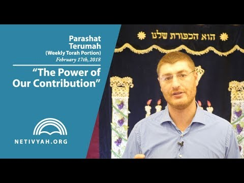 Parashat Terumah: The Power of Our Contribution