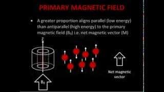 Introduction to MRI Physics