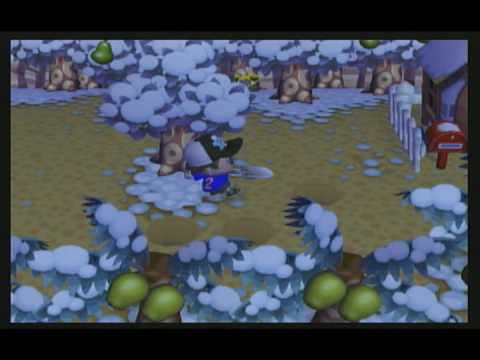 Animal Crossing City Folk - How To Catch A Mole Cricket
