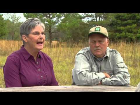 Private landowners conserving Florida wildlife