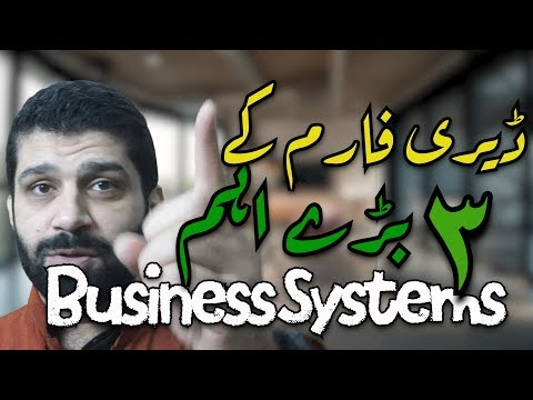 Dairy Farming Success in Pakistan: The Business Systems of a Profitable Dairy Farm (Ur/Hi)