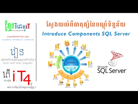 SQL Component DBMS