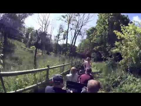 Miniature Train Ride Blackpool Zoo (4k POV)