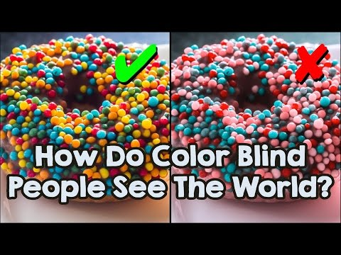 How Do Color Blind People See The World?