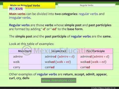 Main or Principal Verbs