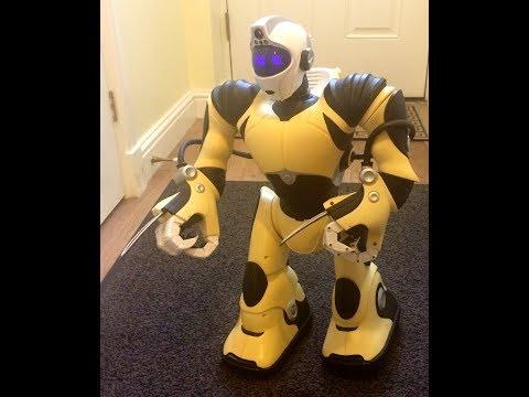 Fixing Wowwee Robotics RSV2 Robosapien V2 Part 12 - Selecting Batteries