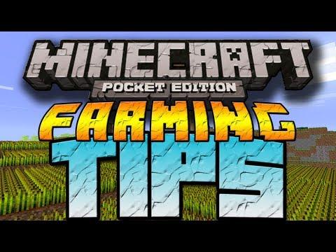 Farming Tips - Minecraft Pocket Edition