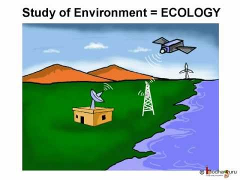 Science - Environment - Pollution - Telugu