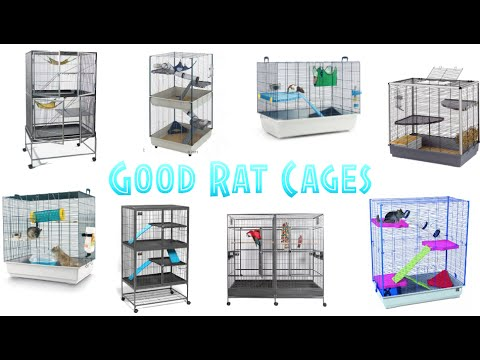 Good Rat Cages!