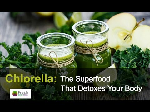Chlorella The Superfood that Detoxes Your Body & Cleanses Heavy Metals
