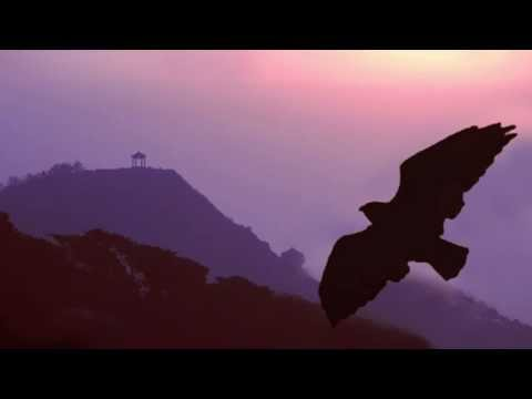 The greatest Love Songs // Over 2 Hours Pan Flute Instrumental Music - Flute de Pan