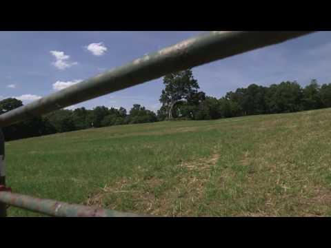 Shawshank Trail 30 second video