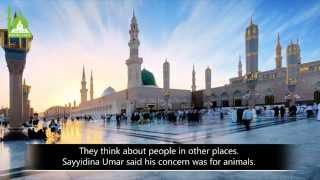 3 Types of Love For The Prophet - Shaykh Hamza Yusuf   Part 1