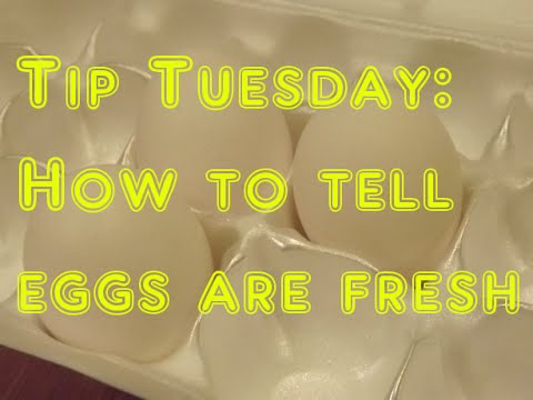 Tip Tuesday: How to tell if eggs are still fresh and good to eat!