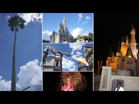 Disney World & Universal Studios Vlog!