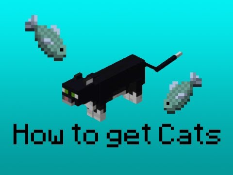 MINECRAFT - HOW TO GET CATS!