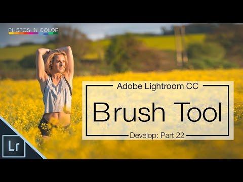 Lightroom 6 tutorial - How to use the Lightroom Brush Tool