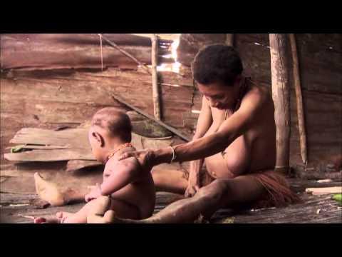 Xxx Mp4 EBS 다큐프라임 EBS Docuprime 아시아의 열대 1부 나무인간 오랑뽀혼 002 3gp Sex