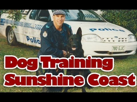 Dog Training Sunshine Coast, Ex-Qld Police Dog Trainer
