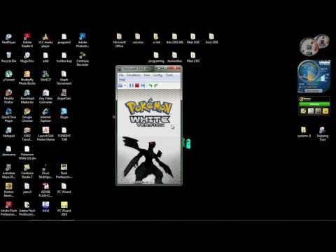 How to play ds games in your pc