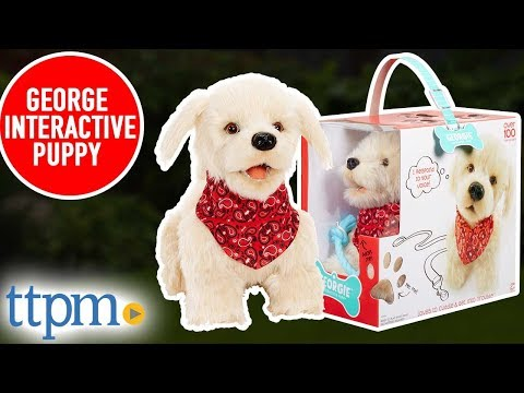 Georgie Interactive Puppy (Demo & Review) from MGA Entertainment
